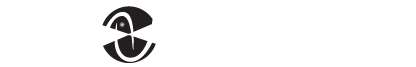 CES Telecom